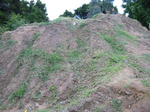 grassy pile
