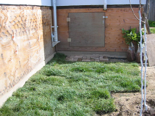 Sod by the basement hatch