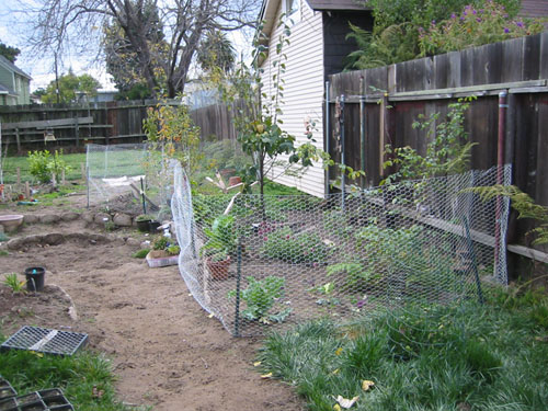 Anti-dog fencing