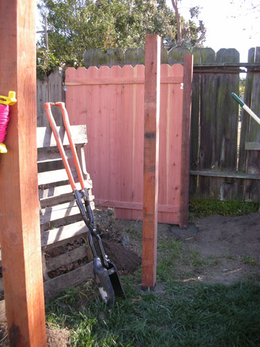 New chicken yard post plus fence