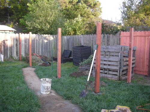 New chicken yard