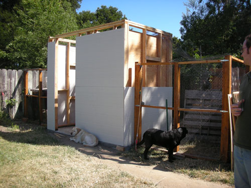 Chicken house with almost all its siding