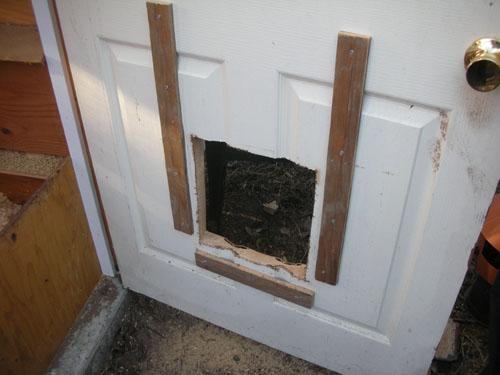 Hole cut in the door