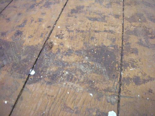 Yucky gunge to scrape off the floor
