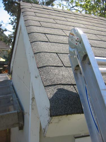 trimmed shingles from above