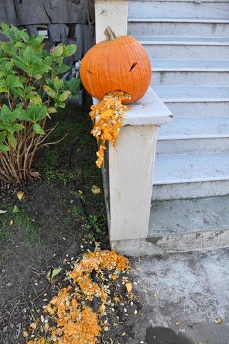 Barfy pumpkin