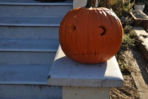Wary pumpkin