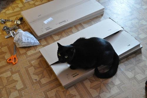 Dash helps Noel put together doors