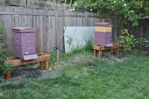 Hive A and Hive B with labels