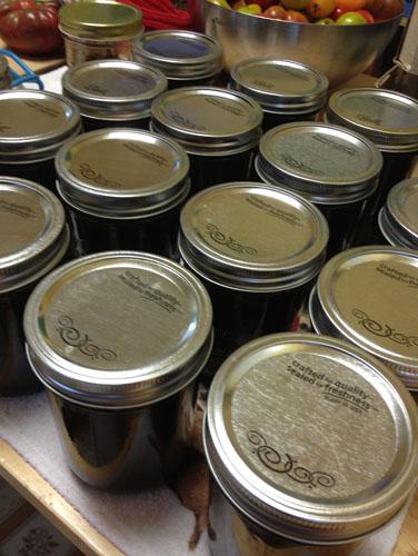 17 jars of sauce