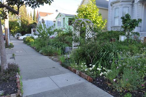 The front walk garden
