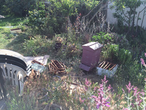 We kicked the bees out of the old equipment
