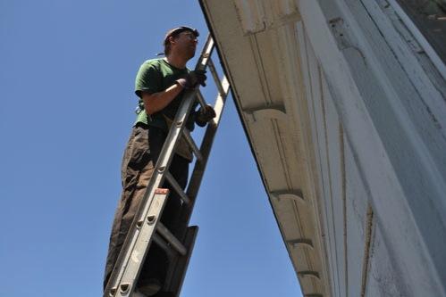 Noel on the ladder
