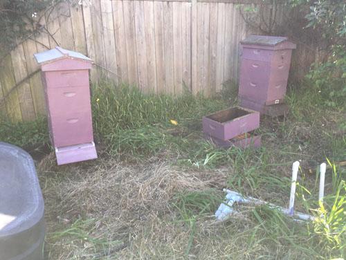 Hive splitting