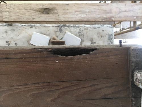 Back bedroom windowsill wood damage