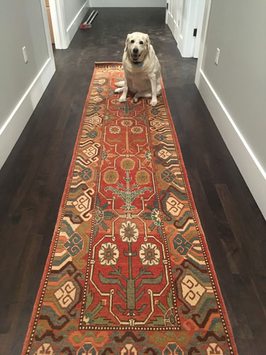 We rolled out a rug